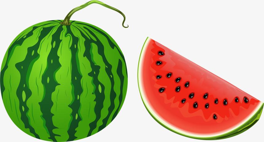 Watermelon Png Whole Watermelon Clip Art Transparent Png 5208570 Png Images On Pngarea